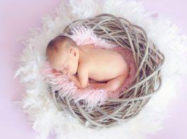 Bebé sobre un nido